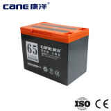 bateria profunda do ciclo da bateria elétrica da bicicleta 65ah para a venda (14-65ah)