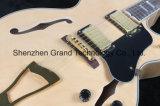 Completamente guitarra elétrica do jazz Semi oco do corpo L5 (GJ-18)
