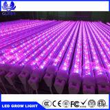 el aluminio planta azul/roja de T8 de la PC de 7W 10W 12W 15W 18W del LED crece el tubo ligero