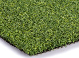 Het zetten van Groen, Kunstmatig Gras voor het Gebied van het Golf (g13-2)