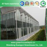 野菜および花成長するのためのVenloの安いタイプガラス温室