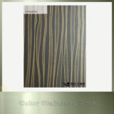 Fournisseur décoratif de la Chine de feuille de couleur de l'acier inoxydable 201 PVD