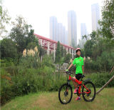Fahrrad des chinesischer preiswerter Preis-nachladbares elektronisches Fahrrad-E für Verkauf