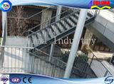 Stepstair de acero prefabricado/escalera/Labber/escalera para el edificio de oficinas (SSW-S-002)