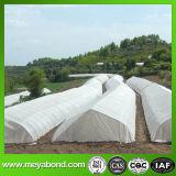 Reticolato della serra di larghezza di 4m, larghezza di 5m e larghezza di 6m