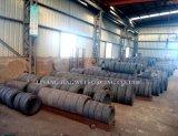 造られるX46cr13か鍛造材のステンレス鋼のリングは餌のダイスを停止する