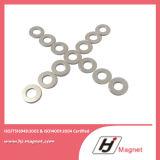 De uitstekende kwaliteit paste de Permanente NdFeB/Magneet van de Ring van het Neodymium voor Motoren aan