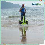 中国の狂気の購買電気スクーターのバランスをとっているブラシレスモーター2*2000Wリチウム電池の自己
