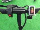 2 колесо складное электрическое Bike/E-Bike