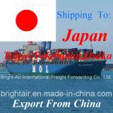 Cargas de frete consolidadas do transporte de carga do mar de Freightways de China a Tokyo, Nagoya, Osaka, Yokohama