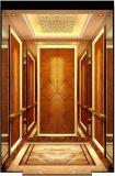 Ascenseur de passager avec la balustrade pour l'hôtel