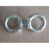 De Heldere of Gegalvaniseerde ring-Noot van uitstekende kwaliteit van DIN 582
