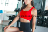 Reggiseno rapidamente asciutto di allenamento per le donne/signora, vestiti correnti, usura di yoga