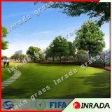 홈과 정원 훈장을%s 인공적인 잔디를 보는 4개의 색깔 연약한 성격