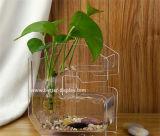 Vase en verre cristallin clair à la mode nouvelle conception Btr-Q8074)