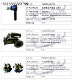 Kit di riparazione del motore dell'accessorio automatico dei pezzi di ricambio del camion di Sinotruck HOWO