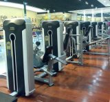 Máquina asentada equipo casero del enrollamiento de pierna de la gimnasia