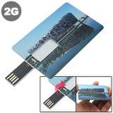 주문 로고를 가진 명함 모양 USB 섬광 드라이브