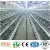 Het Systeem van de Kooien van de Kip van de Apparatuur/van de Jonge kip van het Landbouwbedrijf van het gevogelte