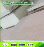 madera contrachapada de 3mm//4mm/5m m Bintangor, madera contrachapada de Okoume