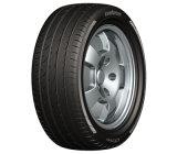 고품질을%s 가진 고성능 안락 타이어 CF700