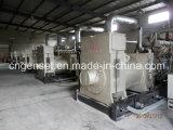 低い消費のガス化装置が付いている専門の供給の石炭ガスの発電機