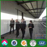 Светлый стальной пакгауз снабжения (XGZ-A042)