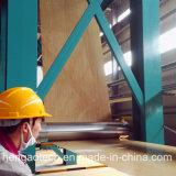A linha Prepainting contínua para a cor revestiu as bobinas de aço Ccl