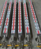 Tester magnetico magnetico del livello dell'indicatore di livello dell'indicatore di livello del galleggiante dell'acciaio inossidabile