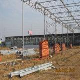 Парник полиэтиленовой пленки самомоднейшей конструкции для используемого земледелия