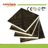 La pellicola materiale principale del legno duro ha affrontato il compensato in cassaforma