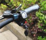 Intelligentes und leichtes mini elektrisches Fahrrad