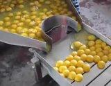 Flüssiges Ei, das das Brechen trocknend sich wäscht, aufbereitendes Gerät trennend