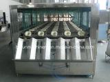 5ガロンのバレル水充填機/バレル水生産ライン