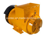 Brushless Professionele Fabrikant van de Generator in China