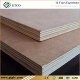 Poplar/Okoume/Bintangor/pinho/de face e parte traseira do vidoeiro placa comercial da mobília da madeira compensada