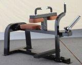 アームカール機械、Bicepのカール機械、説教者のカール機械