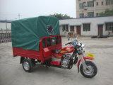 Мотоцикл трицикла Trike колеса груза & пассажира 3 электрический
