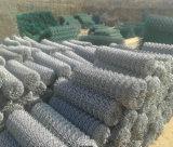 Engranzamento galvanizado venda da ligação Chain da fábrica no rolo