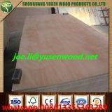 Todas las clases de madera contrachapada de la chapa, madera contrachapada de Okoume, madera contrachapada de la base del álamo, madera contrachapada comercial