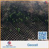 Structure en nid d'abeilles en plastique de stabilisateur de gravier de machine à paver d'allée Geocells