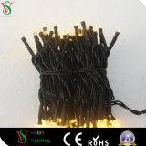 Kabel Belüftung-110V, das im Freien wasserdichtes LED-Zeichenkette-Licht hängt