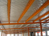 Steel barato Structure Warehouse/Workshop/Building/Shed para África