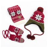 Reeks van de Sjaal van de Hoed van de Dekking van de Tik van de Handschoenen van de Sjaal POM Beanie van de Draai POM van de Kabel van de Winter van de Meisjes van de Jongens van de Kinderen van de Baby van jonge geitjes de Unisex-3PC Lange (SK406S)