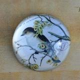 Paperweight semirotondo di cristallo per la decorazione domestica