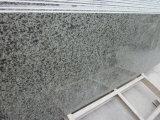 Mattonelle/lastra verdi Polished del granito di alta qualità 600X600X20mm Cina
