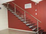 Escalera de acero con las pisadas del acero inoxidable y el pasamano del acero inoxidable