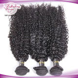 trama Curly Kinky do cabelo humano do cabelo indiano do Virgin 8A