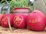 Чернила химикатов печатание плодоовощ Apple съестные