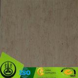 Documento del grano di legno di betulla per il pavimento e la mobilia